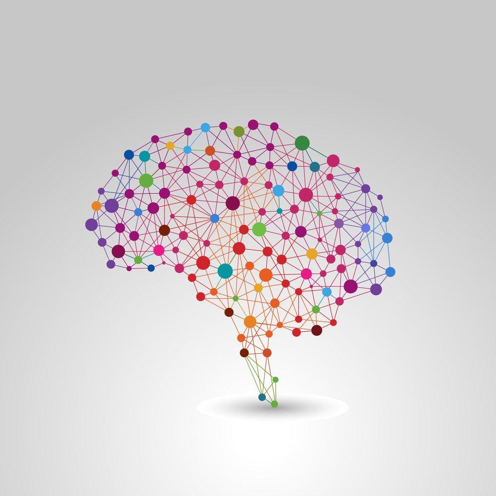 Brain Fats You Should Eat