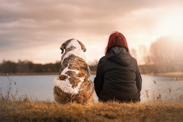 Adopting a Furry Friend: Reasons to Rescue Your Next Pet